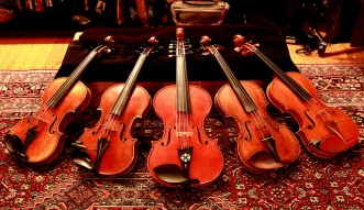Display of FIddles